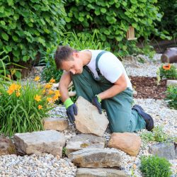 Grounds Maintenance & Landscaping